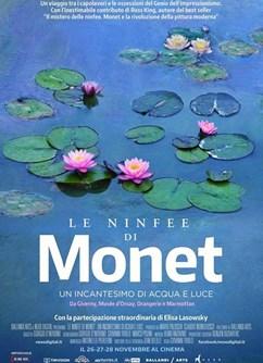 Monetovy lekníny - magie vody a světla  (Itálie)  2D