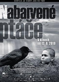 Nabarvené ptáče       - Svitavy -Kino Vesmír, Purkyňova 17, Svitavy