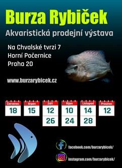 Burza rybiček - prodejní výstava akvarijních ryb- Praha -Stodola - Burza rybiček, Na chvalské tvrzi 7, Praha