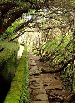 ONLINE: Madeira – klenot Atlantiku za dveřmi (M. Němcová) -Kolem Světa ONLINE, stream, Praha
