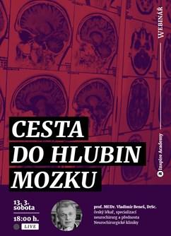 Webinář: Vladimír Beneš: Cesta do hlubin mozku- Online -Live stream, přenos, Online