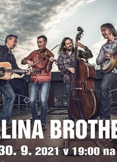 Malina Brothers- Brno -Musilka, Musilova 2a, Brno