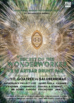 Secret of the Wonderworker 6. - psychedelic masked party