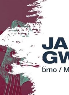 Janek Gwizdala Last Minute World Tour 2017 Brno