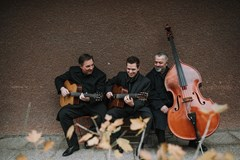 Diknu Schneeberger Trio (AT)